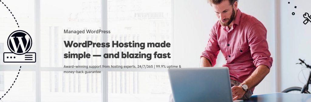 Godaddy worpdress hosting
