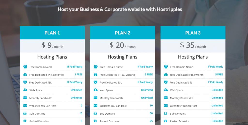 Hostripples business hosting